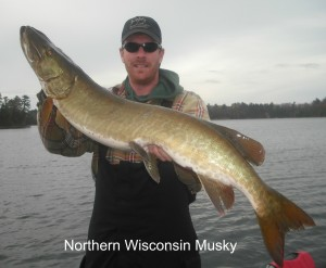 Northern WI Musky