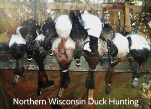 Northern Wisconsin Waterfowling cover