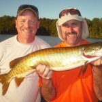 Clients Brian and Jeff with Brian's 1st career musky!  Hooked 5 landed 1 and raised 3 more in 4 hours on a mid August trip.  Congrats Brian!