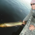 "Client Randy with his first musky (43"") ever on his first ever musky trip! The fish crushed the bait boatside! Had 2 other hookups and one boatside blowup. Half day outing early October."