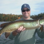 Client Jim with his first musky ever! Another nice fish on the 2nd day of the trio's trip! Well done!