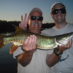 Fish 3 of 5 Clients John and Matt boated 5 muskies their first time musky fishing!  Half day trip Late June 2013