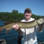 Client Jeff with his 1st musky of the season (40.5) on his 3rd cast of a half day trip!  Lost a GIANT about an hour later and hooked 2 other muskies; raised several more.  Early July 2013.